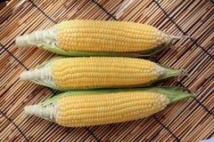 Free Corn Cob Stock Photography - 59997122