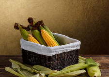 Corn on the cob Royalty Free Stock Photos