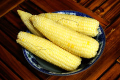 Corn cob in bowl Royalty Free Stock Images