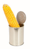 Corn on the cob in a can Royalty Free Stock Photography