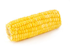 Corn cob close-up Royalty Free Stock Images