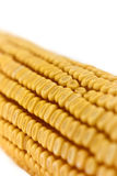 Corn cob detail Stock Photo