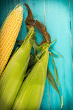 Corn on cob Royalty Free Stock Photos