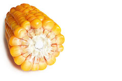 Corn cob isolated Royalty Free Stock Images