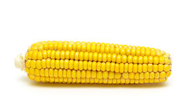 Corn on the cob isolated on white background close-up Stock Photo