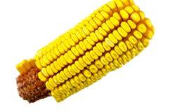 Corn cob isolated Stock Photos