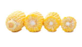 Corn on the cob kernels Stock Images