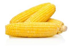 Corn on the cob kernels peeled isolated on white background Stock Photography