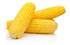 Corn on the cob kernels peeled isolated on white background Royalty Free Stock Photography