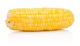 Corn on the cob kernels peeled isolated on white background. Corn on the cob kernels peeled isolated on a white background royalty free stock photo