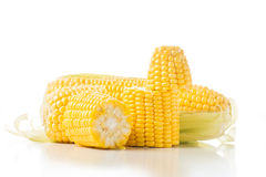 Corn on the cob kernels on white isolated background Stock Photo