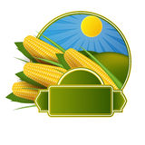 Corn cob label. On white background Stock Photography