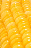Corn cob macro Stock Photo