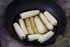 Corn cob is put into the pot of black Stock Images