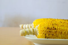 corn on the cob roasted on a grill Royalty Free Stock Photography
