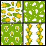 Corn Cob Seamless Patterns Set Stock Photos
