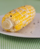 Corn on the Cob with Seasoning Royalty Free Stock Image