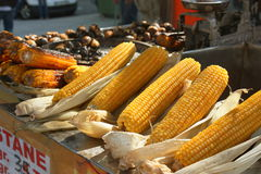 Corn on the cob at a street food stall. Roasted Corn on the cob on the street in Istanbul (Turkey Royalty Free Stock Image