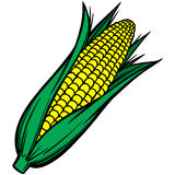 Corn on the Cob. Vector illustration of some Corn on the Cob Stock Image