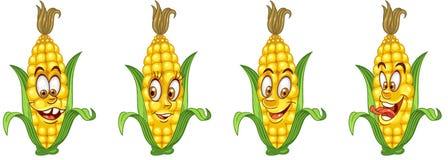 Corn Cob. Vegetable Food concept stock photography