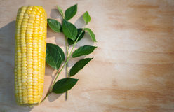 Corn cob. On wood background royalty free stock images