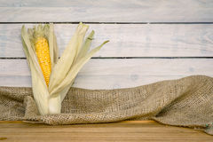 Corn cob on a wooden table Stock Images