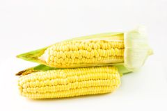 Corn cobs. On white background Stock Photo