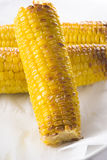 Corn On The Cobs Stock Photography