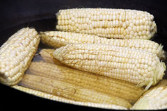 Corn cobs in the black pot on the stove Royalty Free Stock Photography