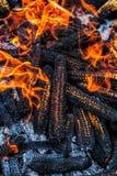 Corn cobs burning. Close up view Stock Photos