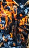 Corn cobs burning. Close view Royalty Free Stock Image
