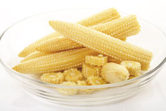 Corn cobs, close-up Stock Photos