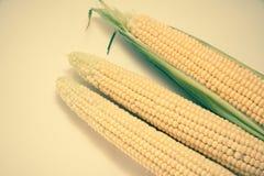 Corn cobs closeup Stock Photos