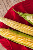 Corn cobs with copy space Stock Image