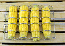 Corn cobs in corn grilled basket Royalty Free Stock Photography