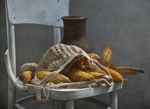 Corn-cobs e jarro imagem de stock