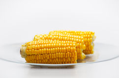 Corn Cobs on a glass plate. Small DOF Royalty Free Stock Photos