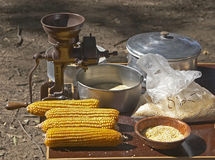 Corn Cobs and Grinder. Corn cobs on the table with ground corn Stock Image