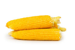 Corn cobs isolated. On the white background Stock Photos