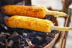 Free Corn Cobs On The Grill. Close-up Image With Corns And Hands. Asian, Indian And Chinese Street Food. Trolley On The Beach Stock Photo - 144609410