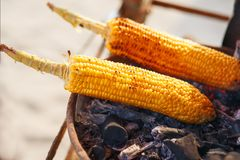 Free Corn Cobs On The Grill. Close-up Image With Corns And Hands. Asian, Indian And Chinese Street Food. Trolley On The Beach Stock Photo - 144609420