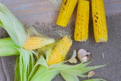 Corn cobs on a sackcloth Stock Photos