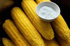 Corn cobs with salt Royalty Free Stock Images