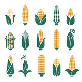 Corn cobs vector icons for cereal or grain. Corn cobs vector logo templates for cereal or maize grain product and food labels or agriculture company stock illustration