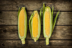 Corn cobs on vintage wood background Royalty Free Stock Photo