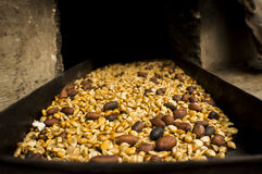 Corn and cocoa in a pan. Corn and cocoa beans roasted in a recent pan from the oven Royalty Free Stock Image
