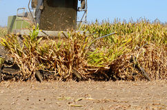 Corn Combine Royalty Free Stock Images