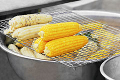 Corn cooking Royalty Free Stock Image