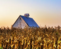 Corn Crib Royalty Free Stock Photography