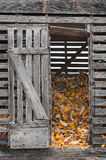 Corn Crib with Open Door Stock Photo